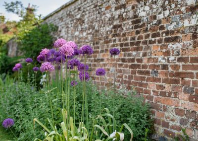 Sprivers_May_Garden_1